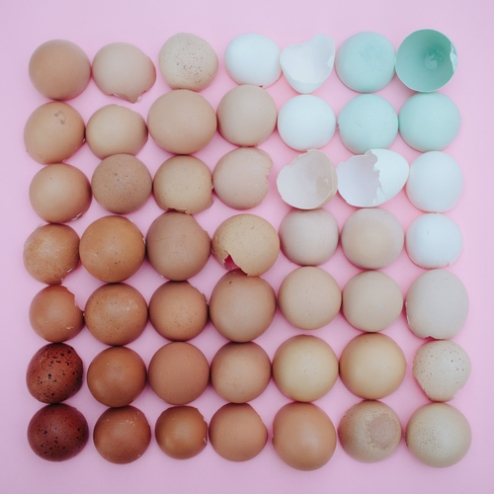 EB eggs
